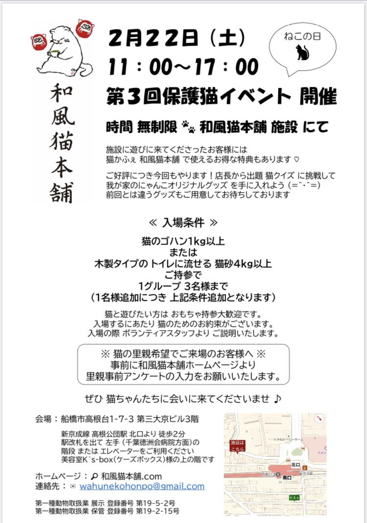 第3回保護猫イベント開催(=^ェ^=)